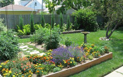 Backyard garden beds, July 9, Racine, Wisconsin