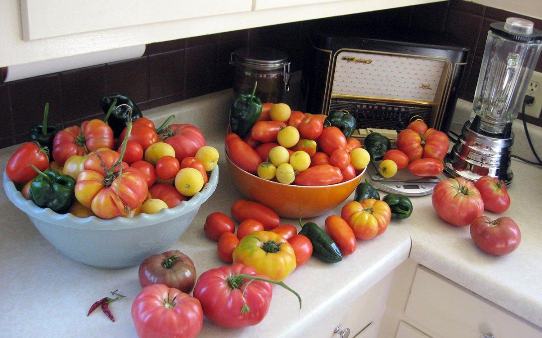 Heirloom tomato haul from Racine, Wisconsin garden