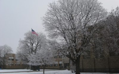 Mitchell School, Racine: Hoarfrost and American flag