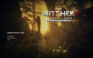 witcher 2 decision
