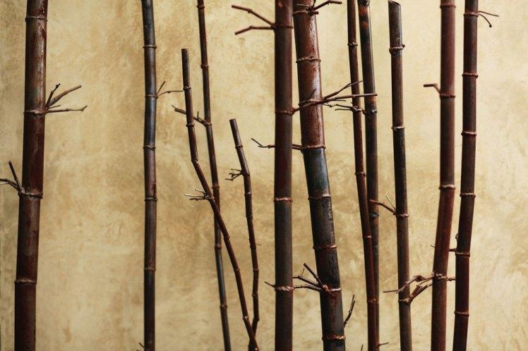 Bamboo 11 - Detail