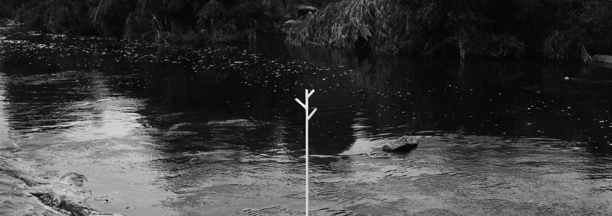 4th tree@ LA River Trail - Frogtown