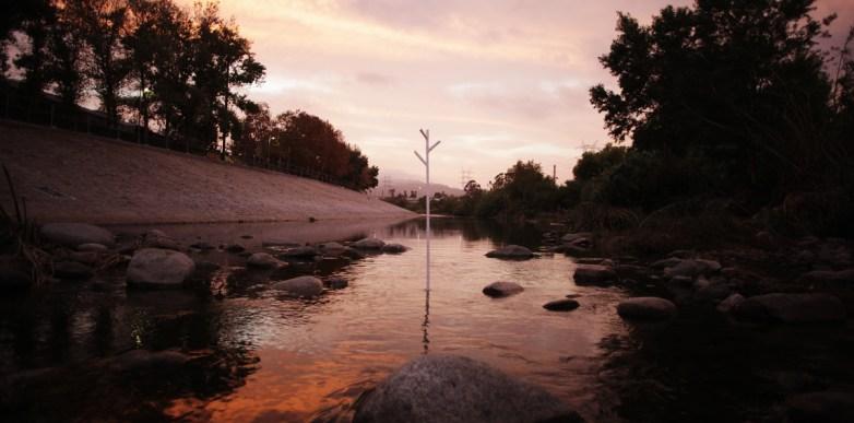 4th tree @ LA River