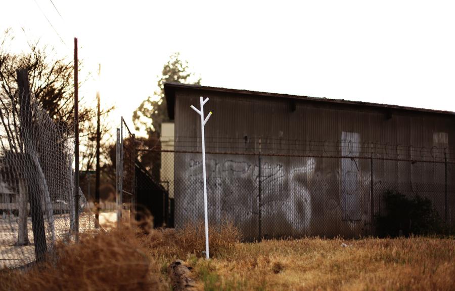 4th tree @ Urban lot Santa Ana, CA