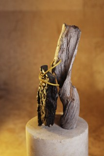 Wrapped Yellow - stone, wood, bronze, wire