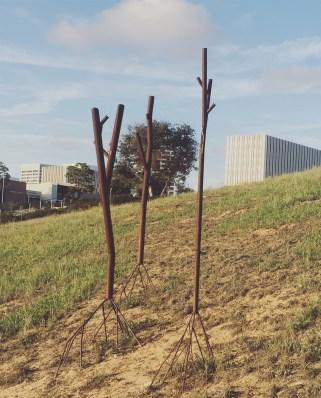 DBM.18.3trees@Newport