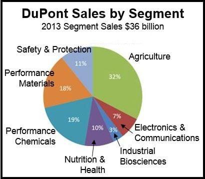 DuPont Segment Sales