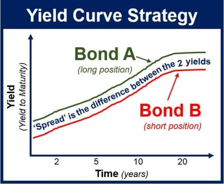 Yield Curve Strategy