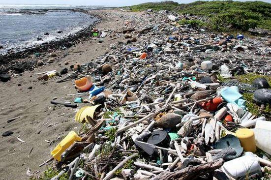 Plastic debris on a beach