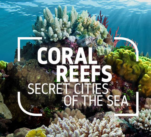 Coral Reefs of the Sea exibition