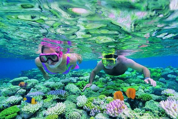 Coral reef ecotourism
