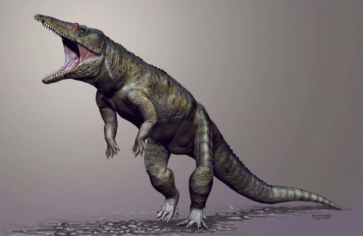 Upright prehistoric crocodile Carnufex carolinensis