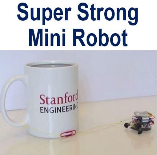Super strong mini robot