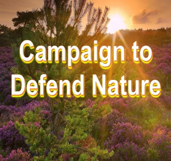 Campaign to defend nature RSPB