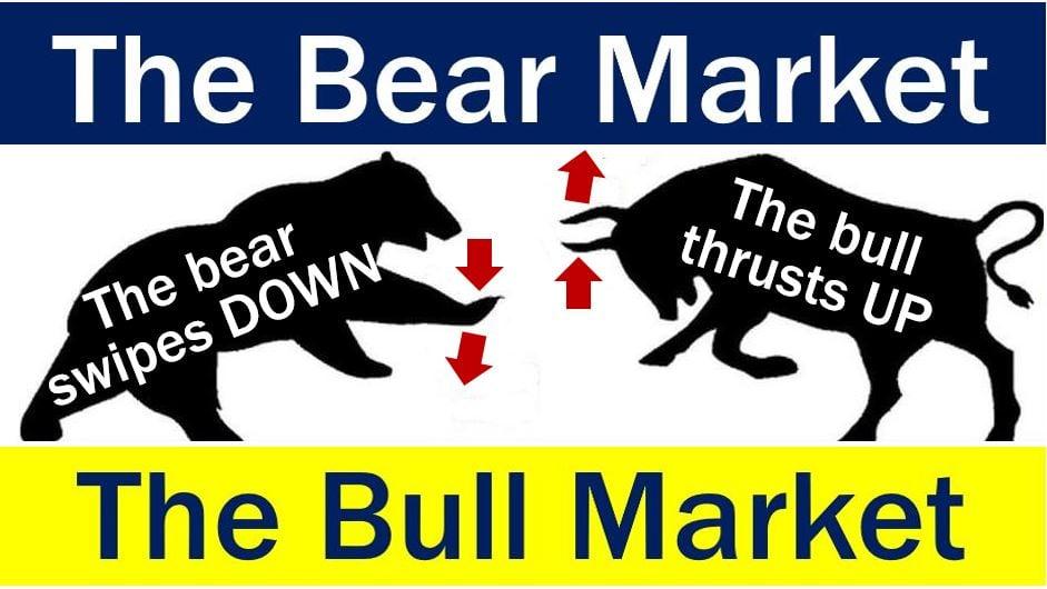 Bear Market - Bull Market