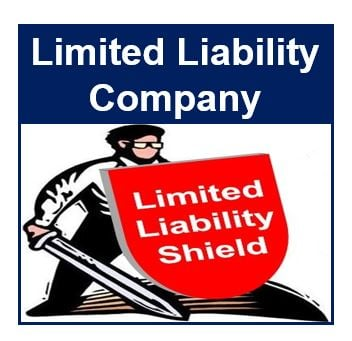 Limited Liability Company thumbnail