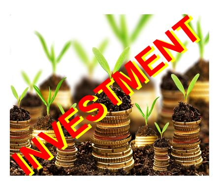 Investment thumbnail