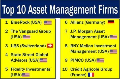 Top ten asset management companies