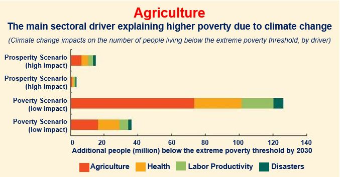 Drivers of poverty