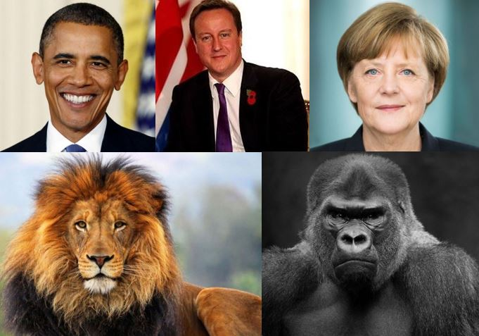 Humans and other mammals