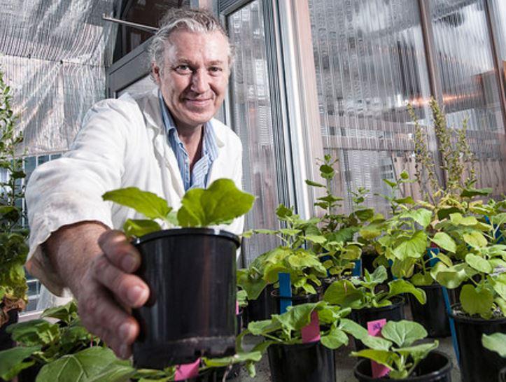 Peter Waterhouse space farming