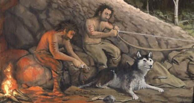 Dogs and humans throughout history