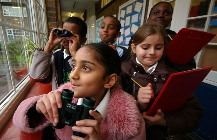 Big Schools Birdwatch
