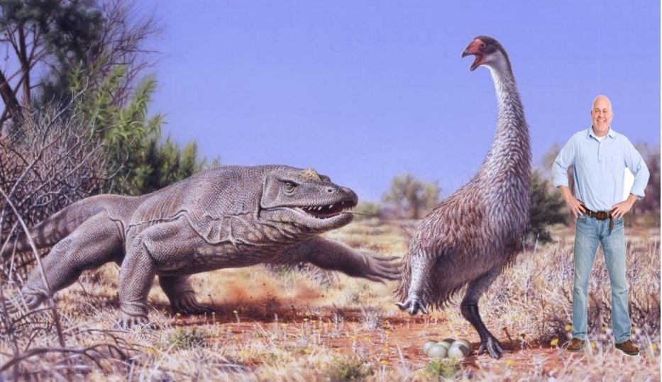 Large prehistoric flightless bird genyornis in Australia