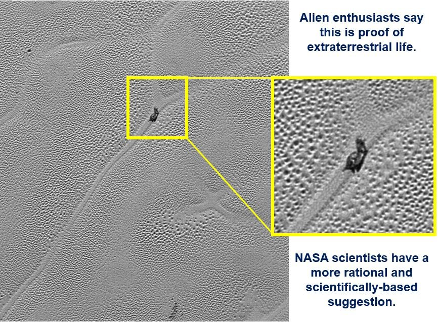 Snail like object found on surface of Pluto