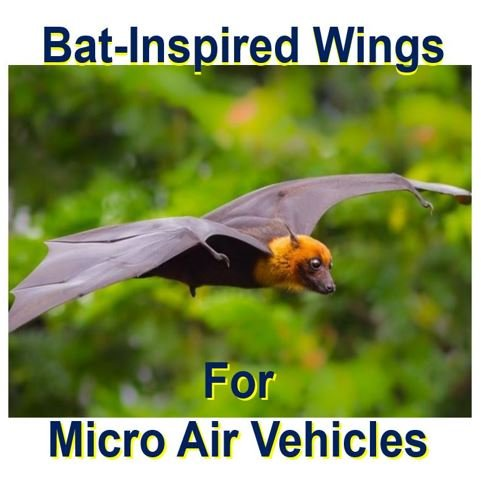 Micro air vehicles fly better with prototype bat wings