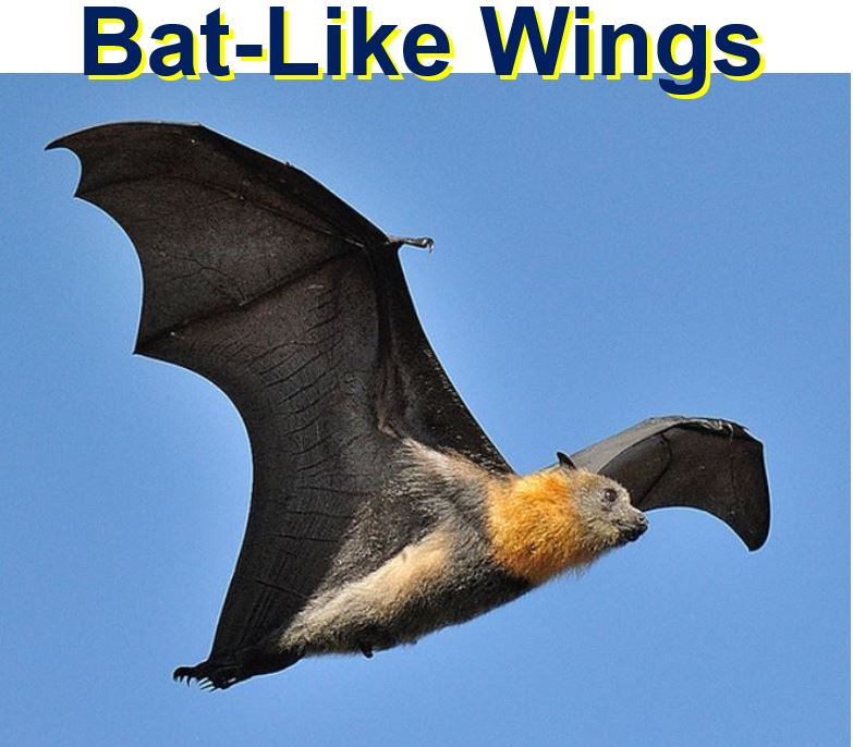 Bat micro drone wings