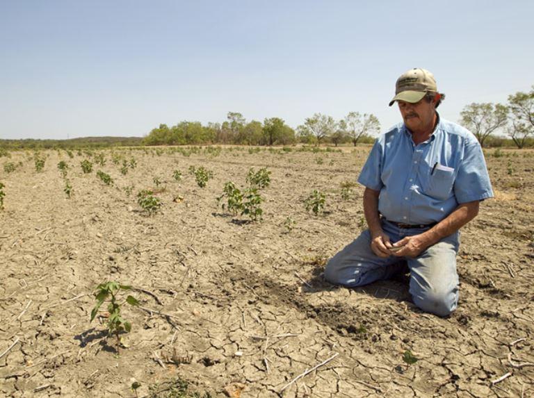 Texas drought of 2011