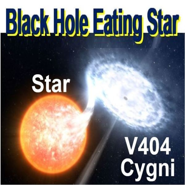Violent black hole devours star and emits energy of 1000