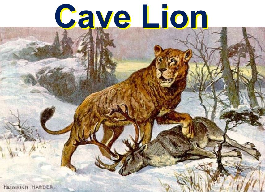 Cave Lion with prey