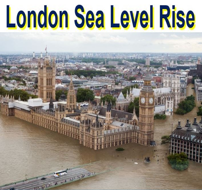 Climate change London sea level rise