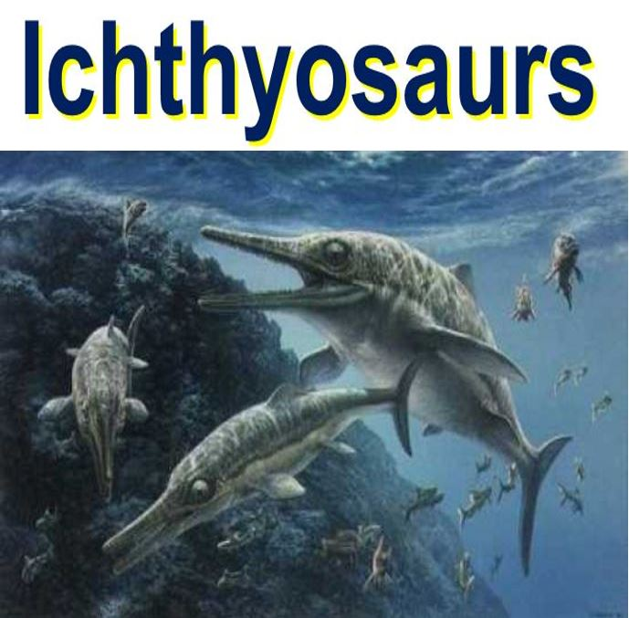 Ichthyosaurs were killed off by climate change