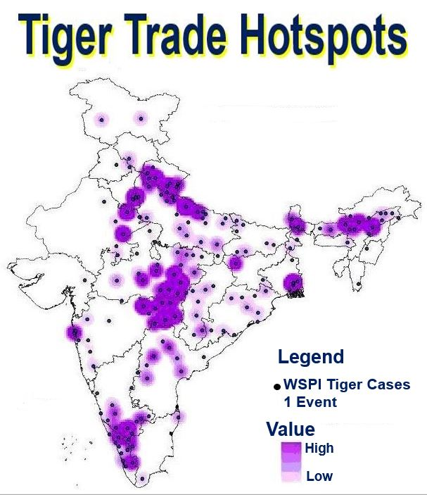 Tiger Trade Hotspots in India