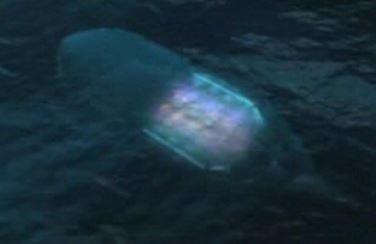 Underwater ufo Russian seas