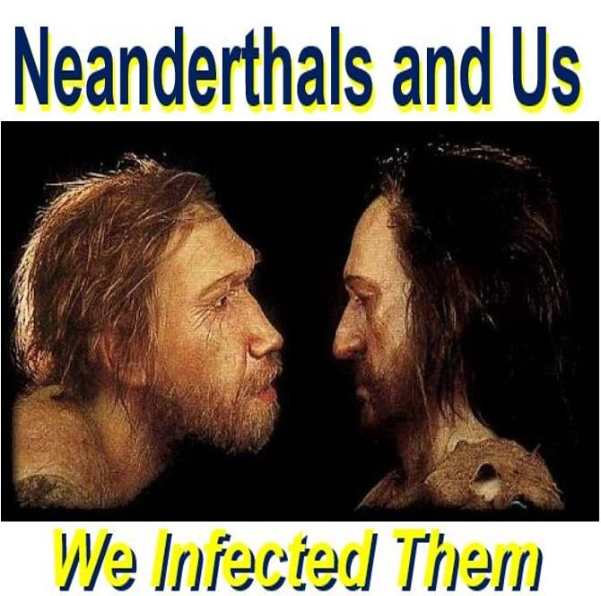 We infected Neanderthals with tropical diseases