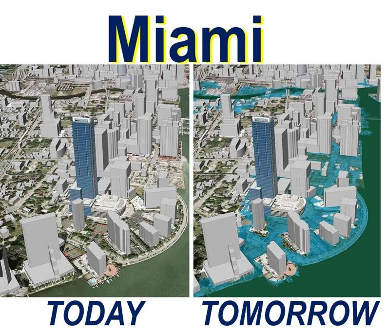 Miami coastal flooding