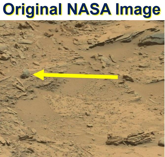 Original NASA image bigfoot skull