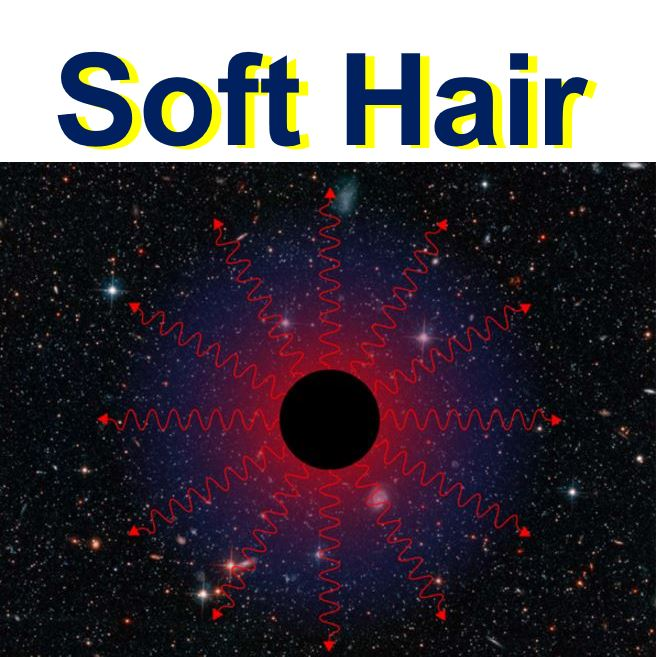 Black hole soft hair