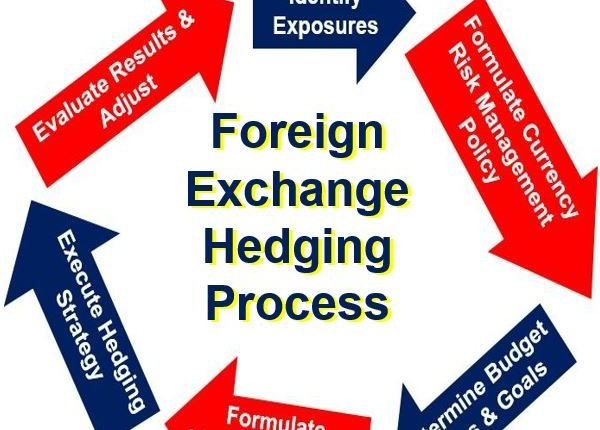 Foerign Exchange Hedging Process