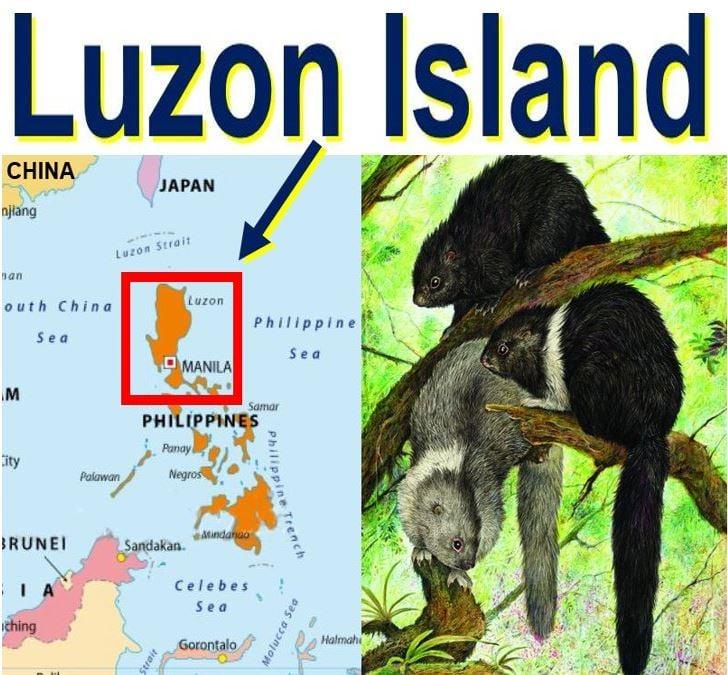 Luzon Island