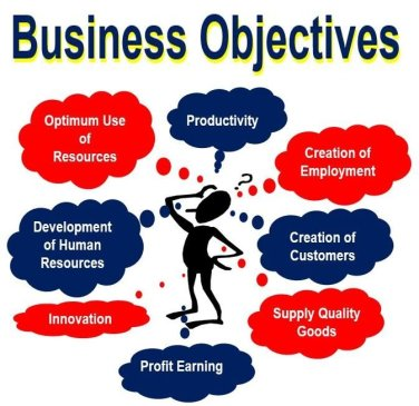 Business objectives of a company