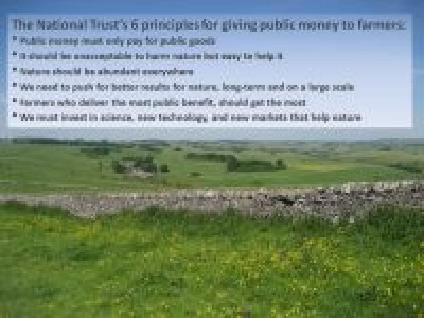 National Trust's 6 principles for farming subsidies