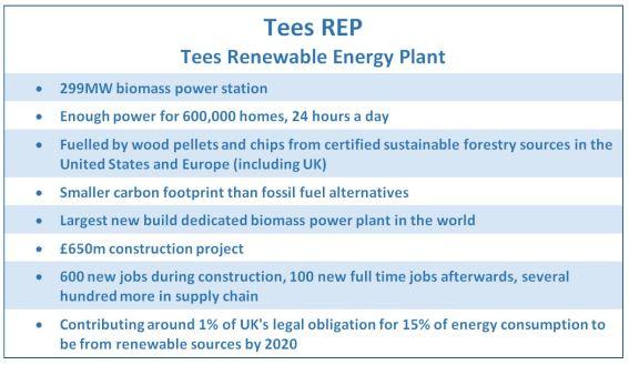Tees REP biomass power plant key points