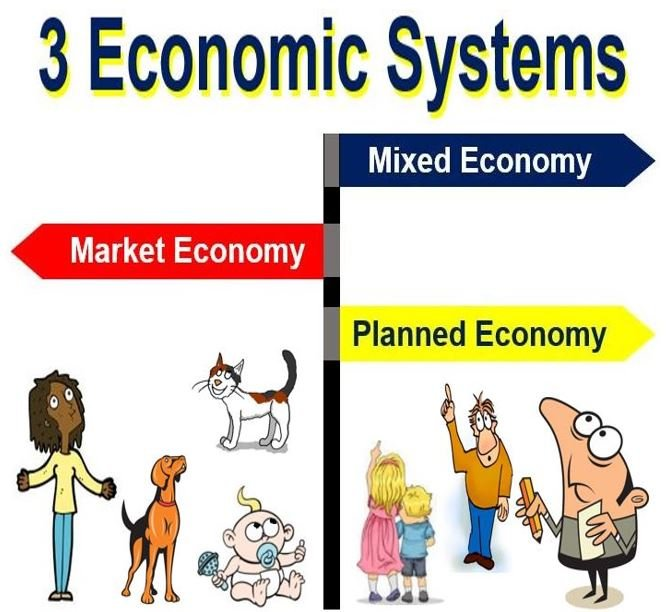 mixed economic system definition