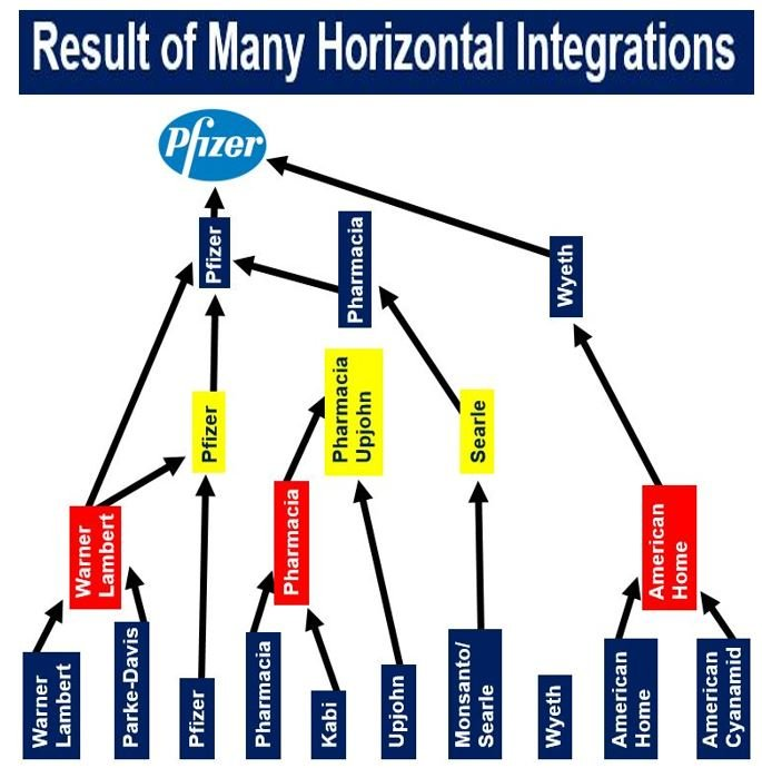 Pfizer result of horizontal integration