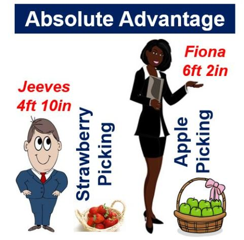 Absolute Advantage: strawberry and apple picking